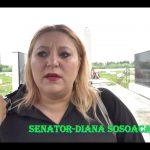 SCURT INTERVIU CU DOAMNA SENATOR  DIANA SOSOACA !